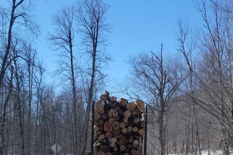 La forêt Kenauk